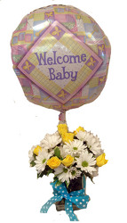 DFF324 Welcome Joy Baby Boy Bouq.