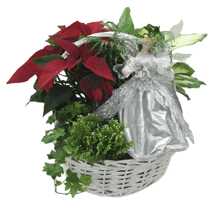 Dundalk Florist Official Site Send Flowers To Dundalk Md And