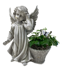 DFP938 Angel w/basket and ivy plant