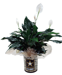 DFPA5 Army Tin Container w/Peace Lily
