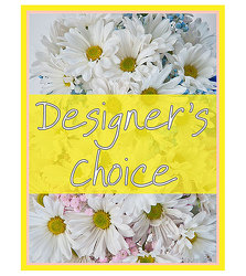 TMF-DCNB Designers Choice - New Baby