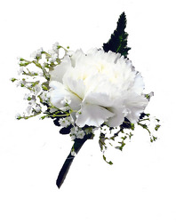 P8 Single Carnation Boutonniere