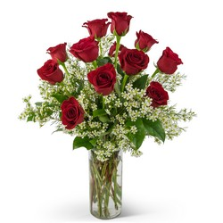 TMF-273 Swoon Over Me Dozen Red Roses