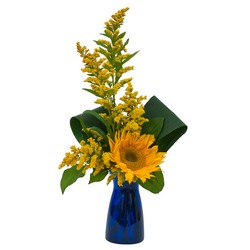 TMF-613 Simply Sunflower
