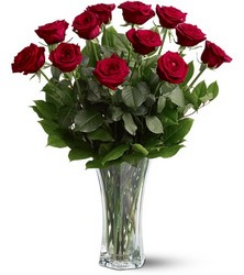 TF31-1 Red Roses